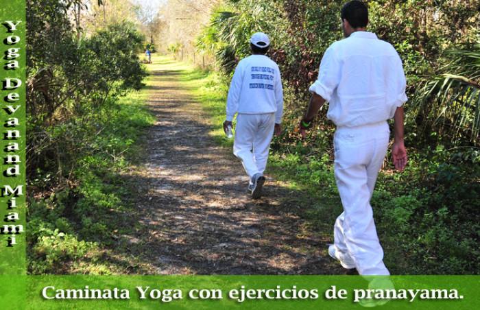Caminata Yoga con ejercicios de pranayama em Doral