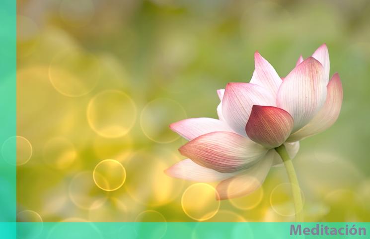 Paz yoga y meditaci n for Meditacion paz interior