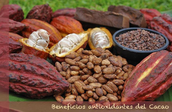 Beneficios antioxidantes del Cacao